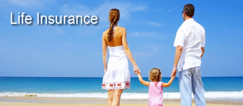 Kinghorn Insurance Agency, Life Insurance Pee Dee